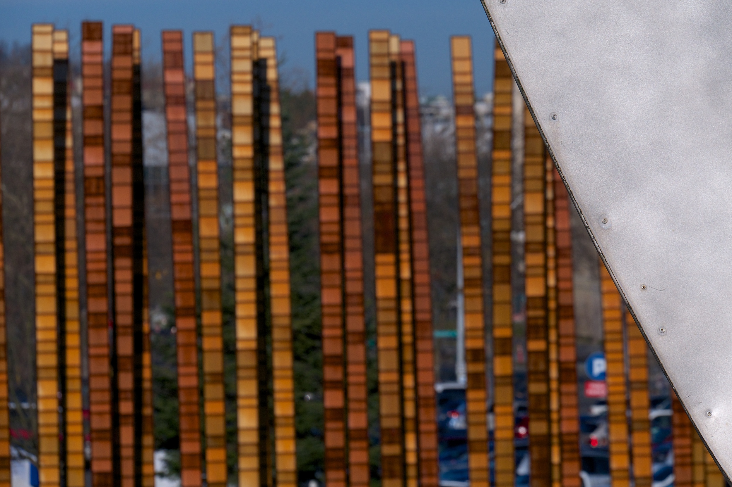 Bamboo Forest and Experience Music Project, 100mm, f/8, 1/2000, ISO 200