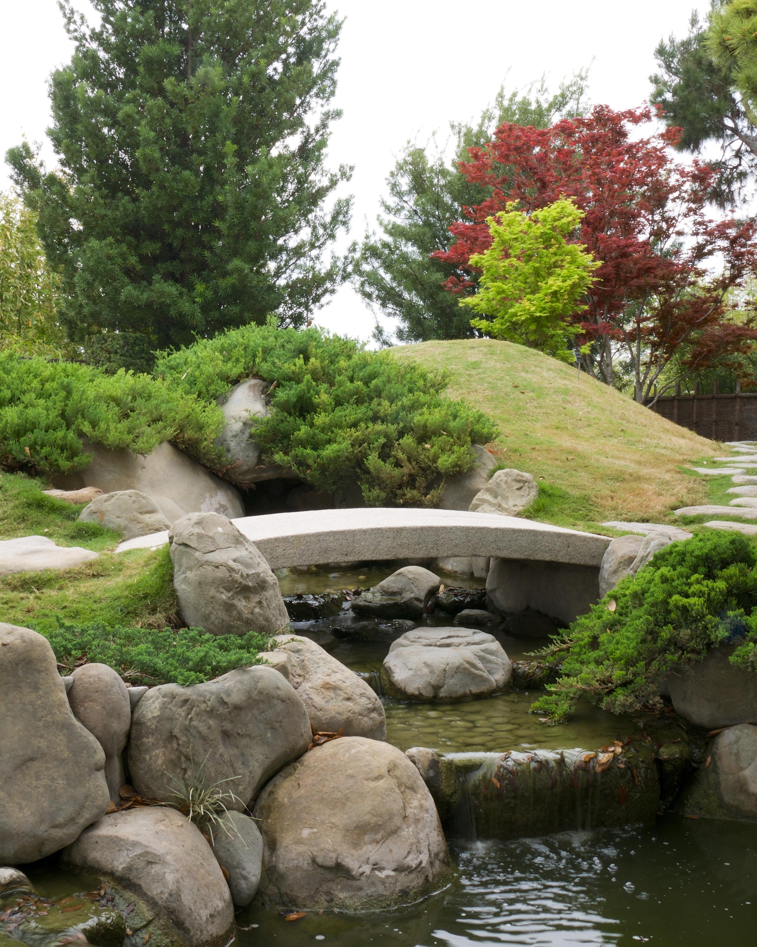 San Antonio Botanical Garden's Japanese garden
