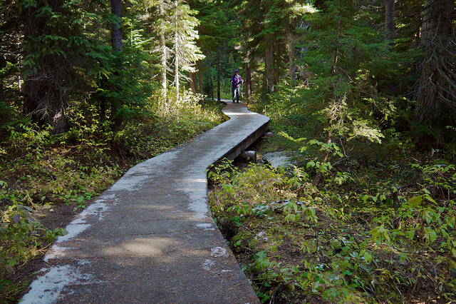 Boardwalk near the trailhead