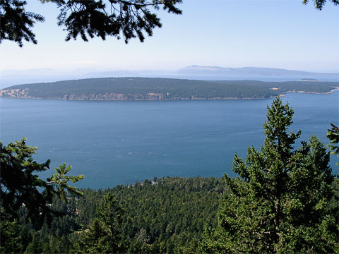 We walked up Turtleback Mountain and went to the lookout where you can see Waldron Island.