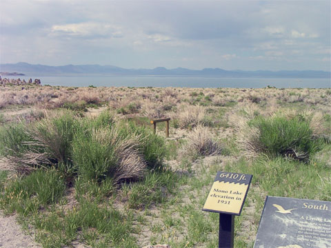 The level of the lake has been decreasing drastically over the years, especially since freshwater diversions to Los Angeles were created in 1941 (this sign shows where the Mono Lake shore used to be in 1951). Limits on how much water could be diverted were set in 1994.