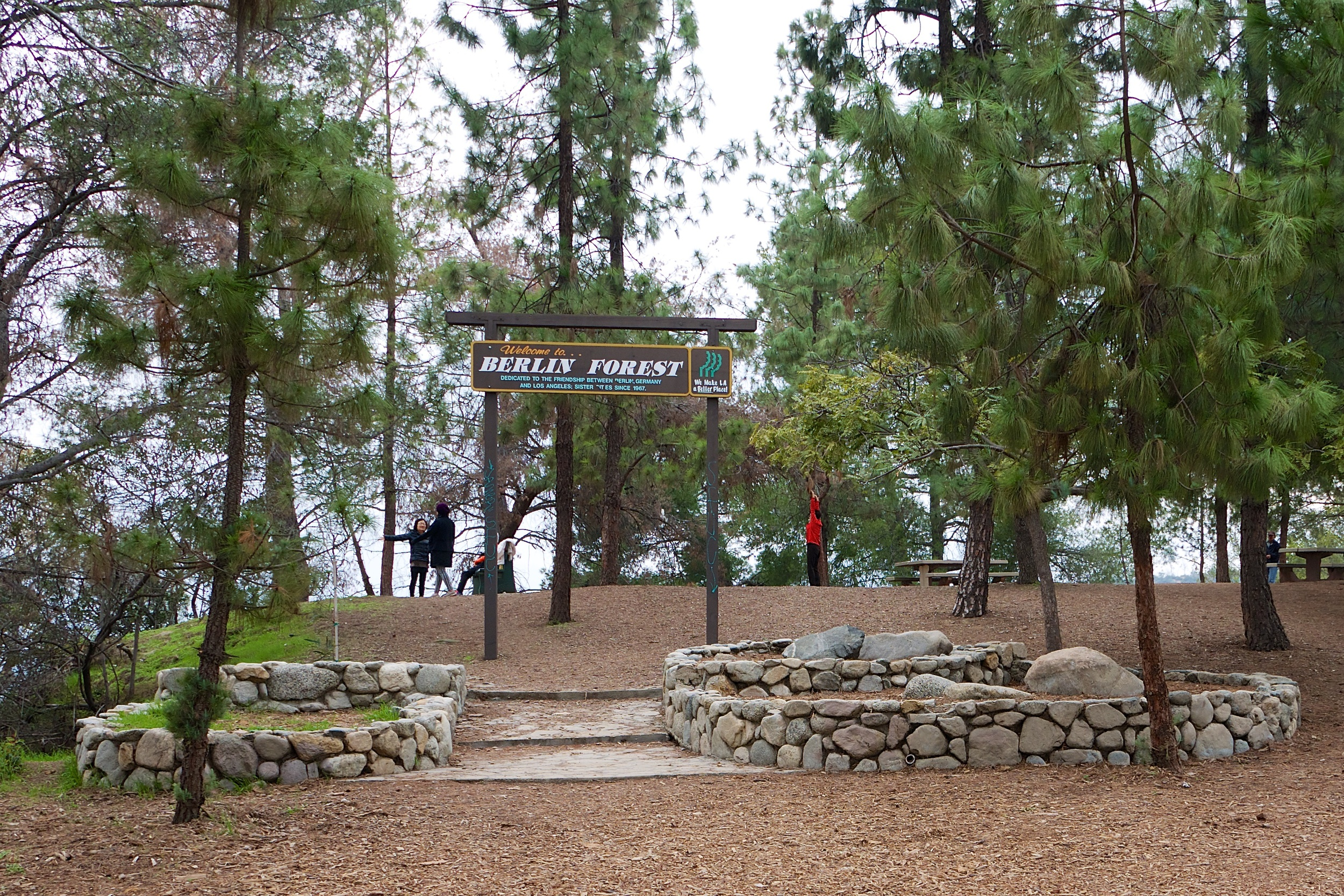 Berlin and Los Angeles are sister cities, which is why this small grove of trees is dedicated to the city