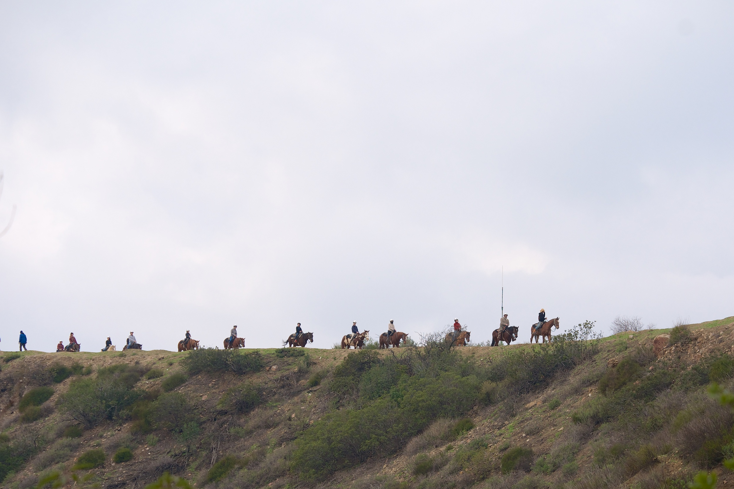 We saw a group of riders as we were going up the hill, and saw them going down as we got to the top