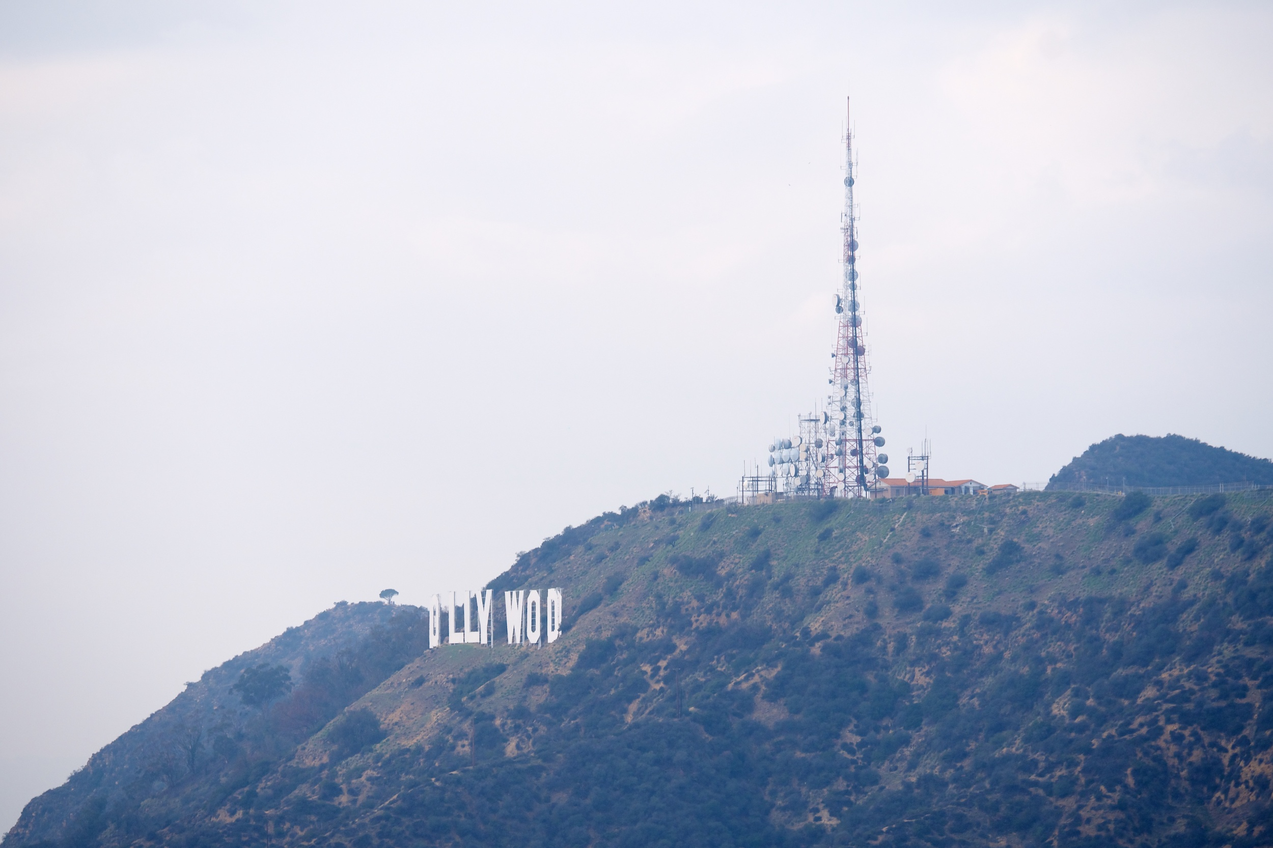 """Since the letters of the Hollywood sign aren't all in a row, sometimes you don't see all of them from some angles, such as here where you only see """"OLLYWOD"""""""