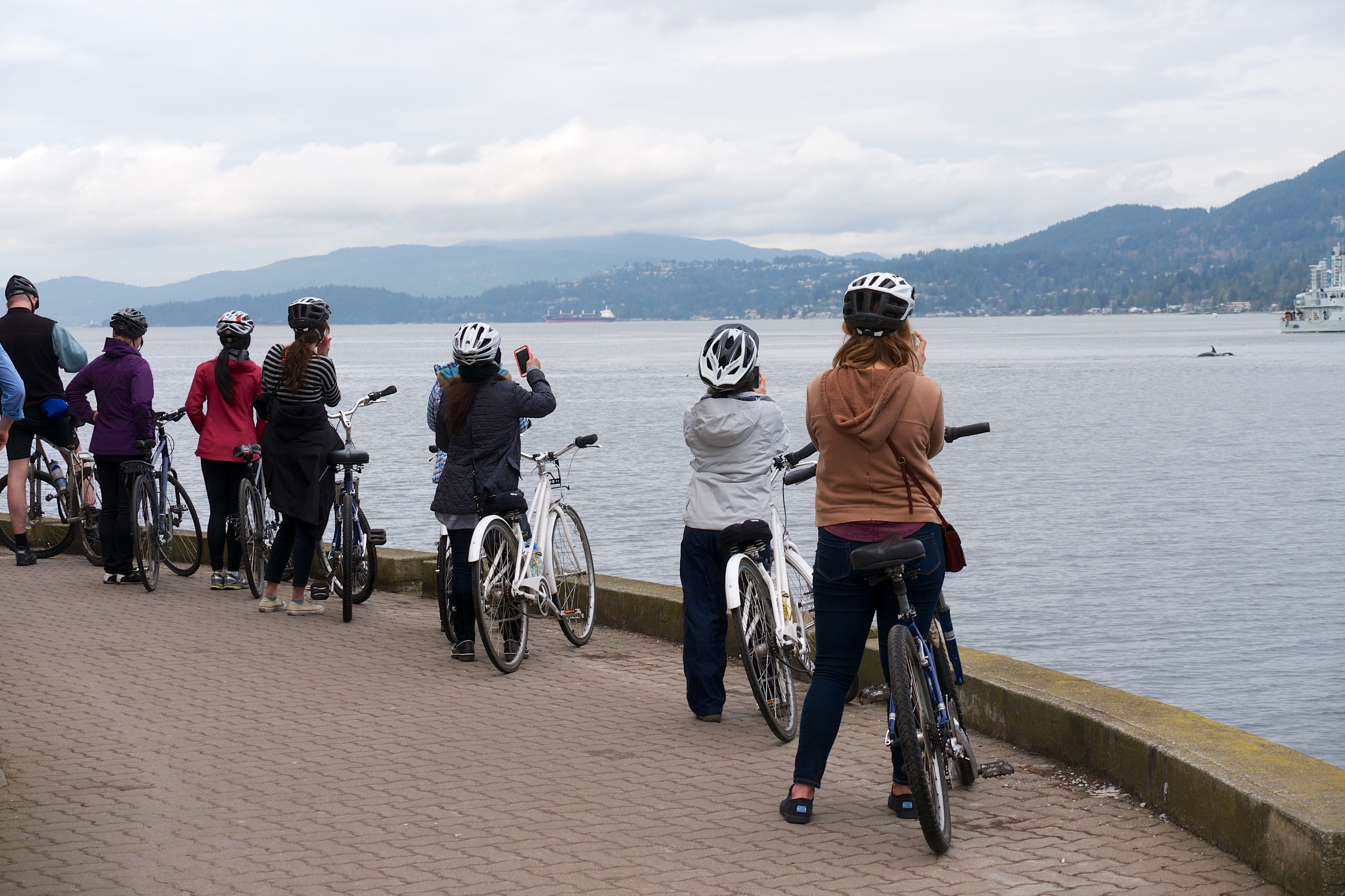 Bikers taking pictures of the orcas