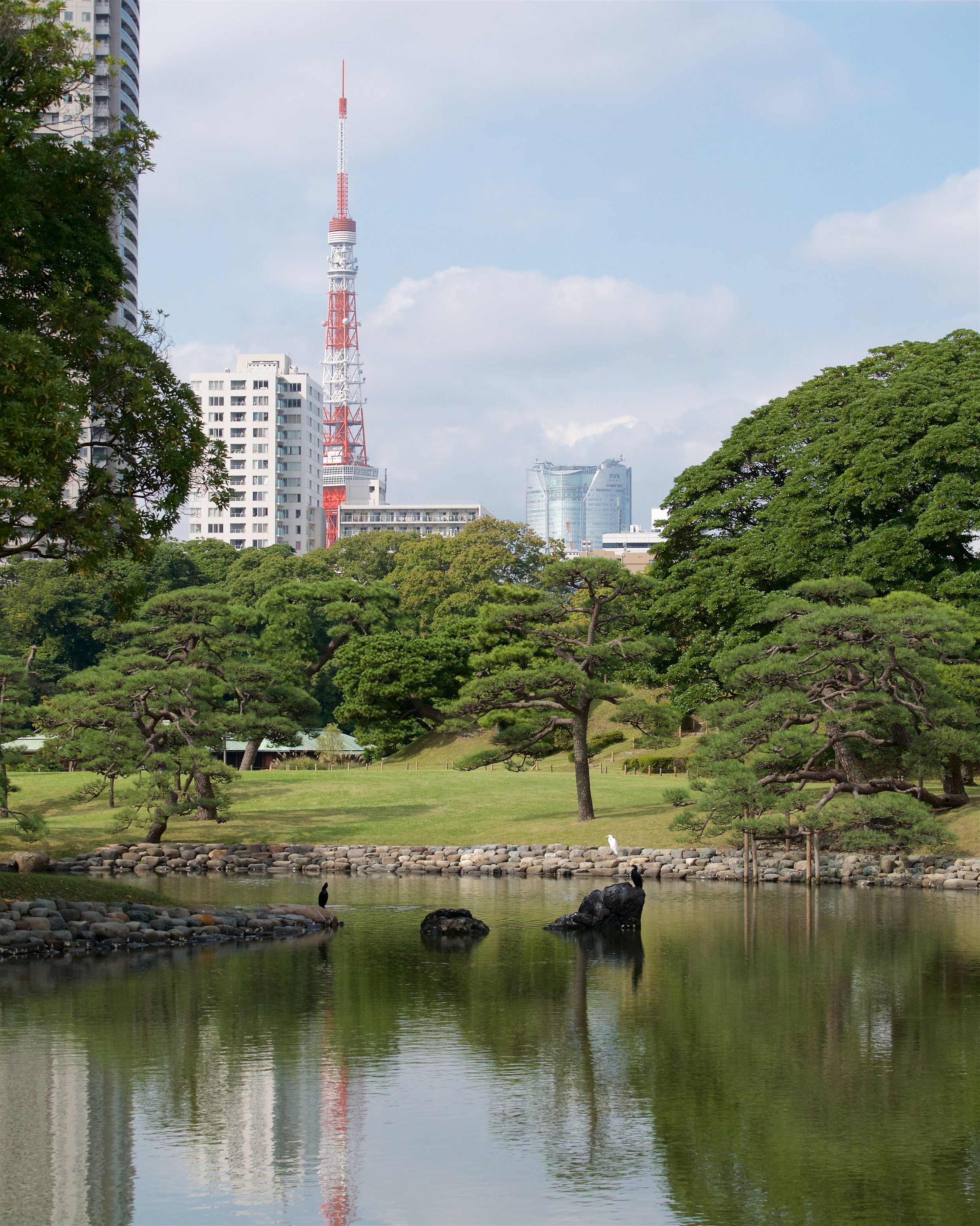 Tokyo Tower in the background