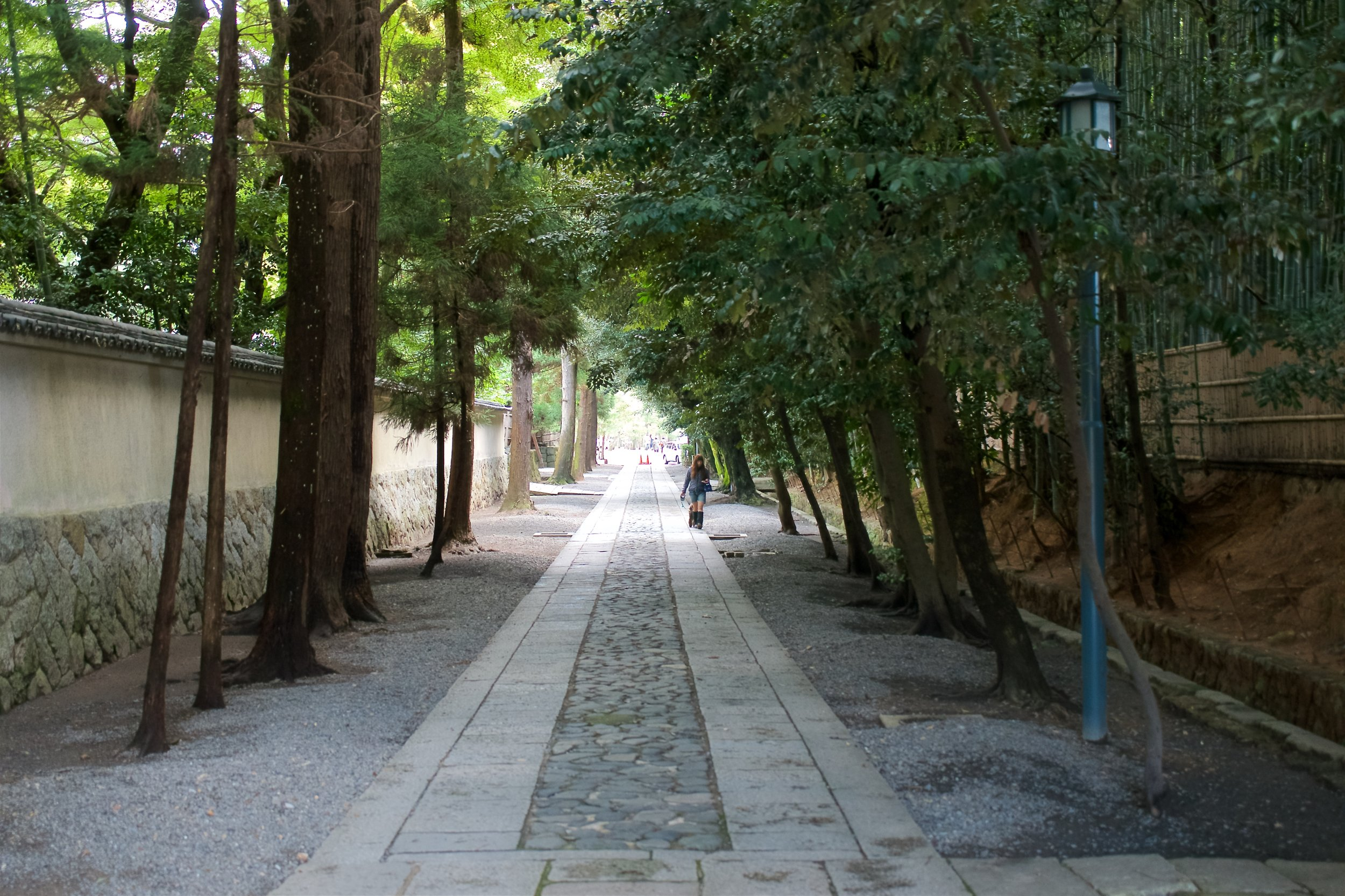 Daitoku-ji Temple had several tree-lined roads within its walls