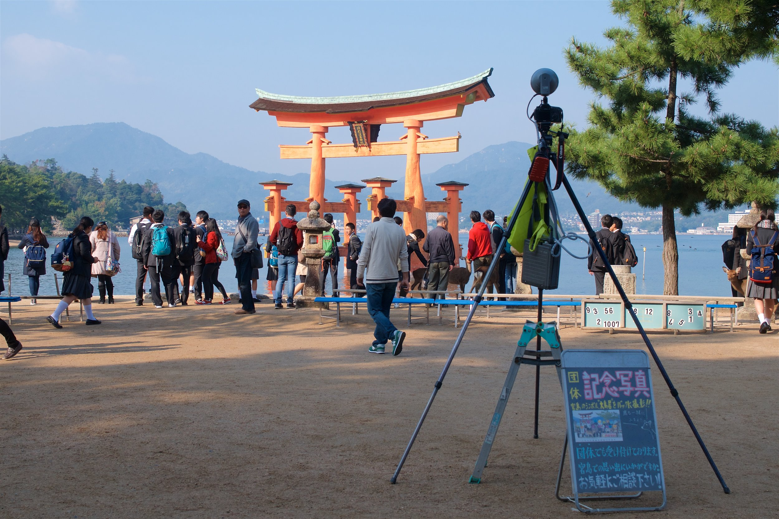 Many group photos being taken with the torii in the background