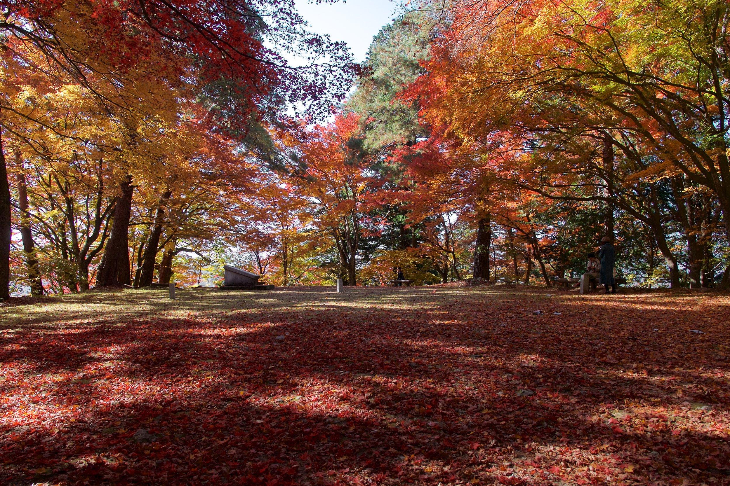 Takayama Castle ruins
