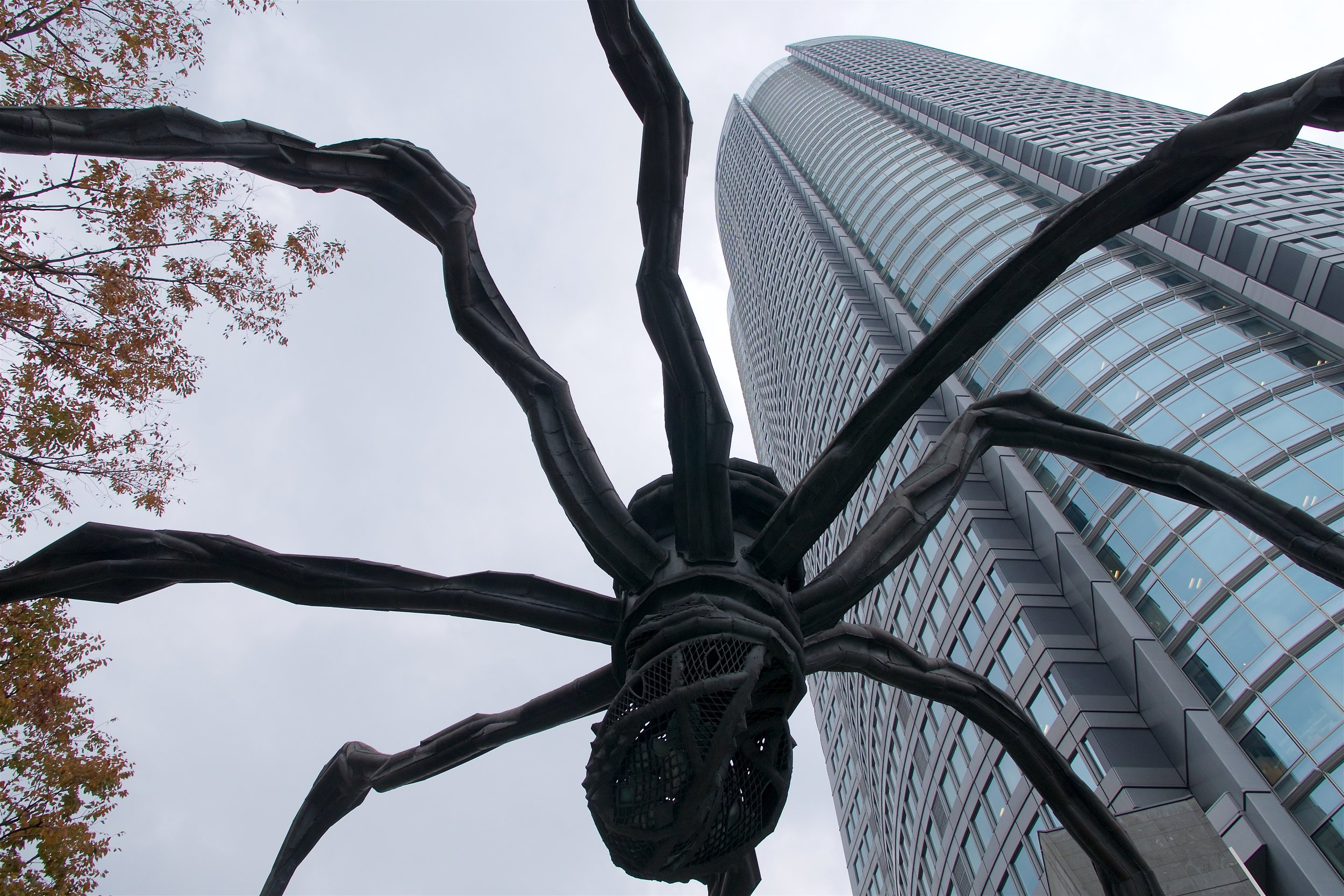 This spider sculpture, Maman, covers a big section of the Roppongi HIlls plaza
