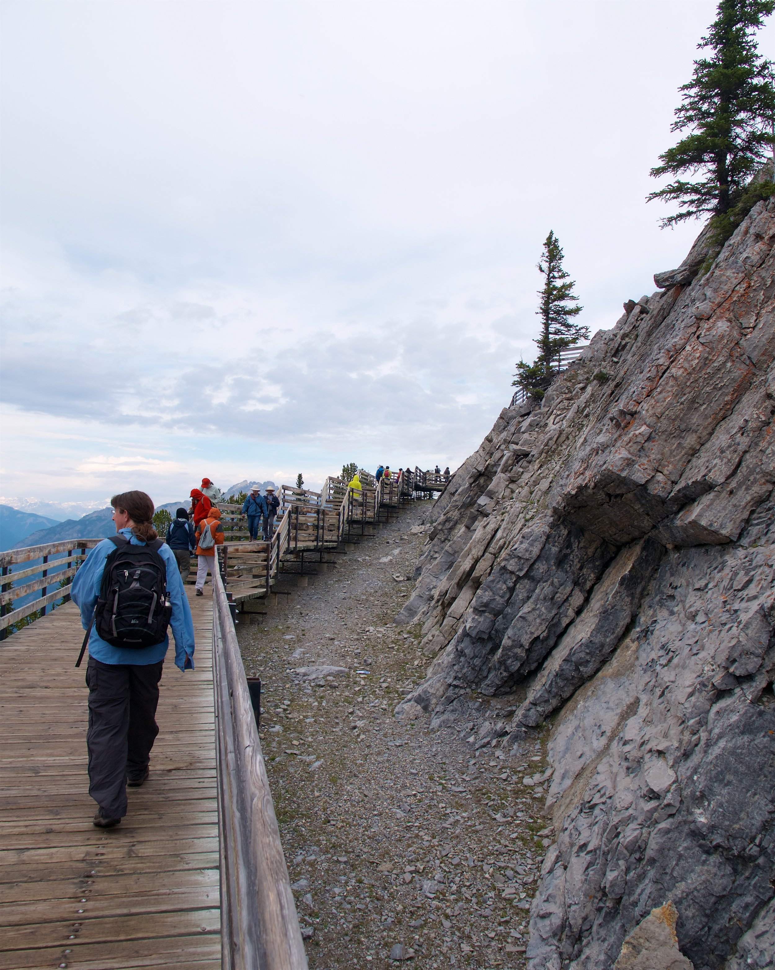 Boardwalk along the summit ridge