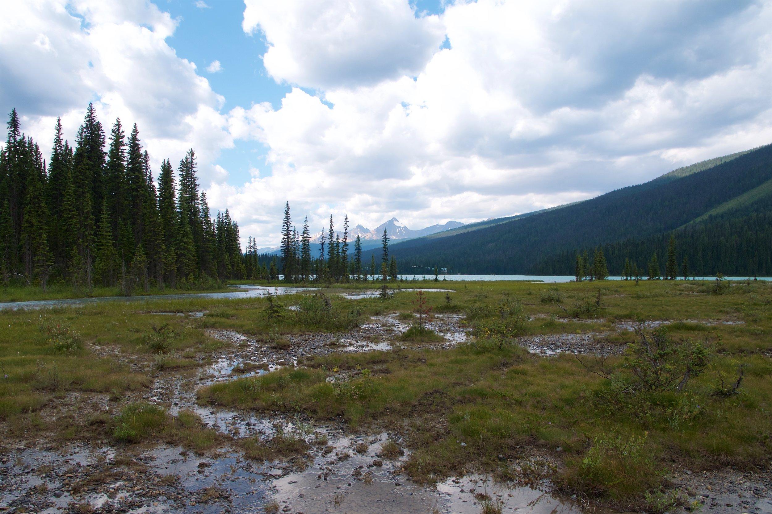 Delta end of Emerald Lake