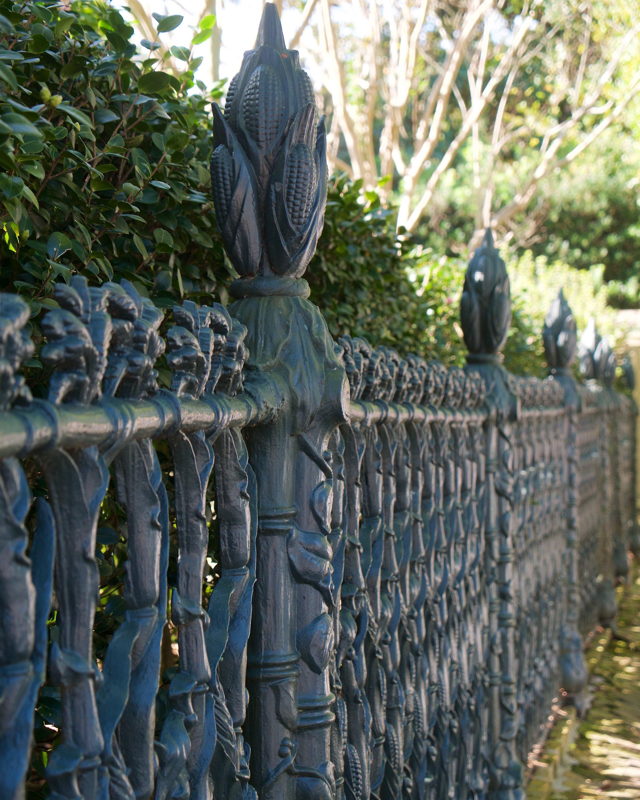 Corn stalk fence
