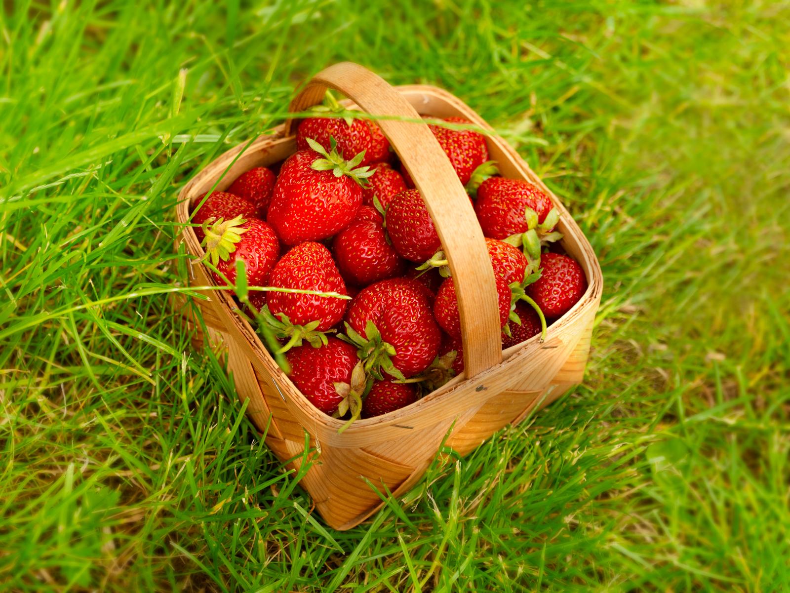 madhimlen_strawberry_007.jpg