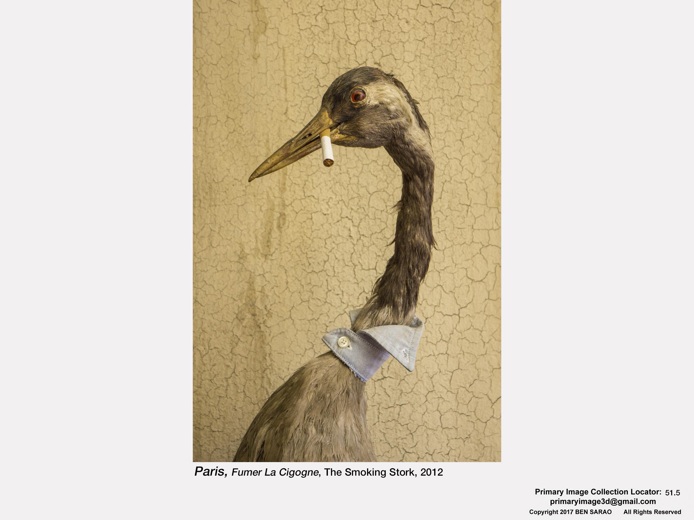 4. Smoking Stork.jpg