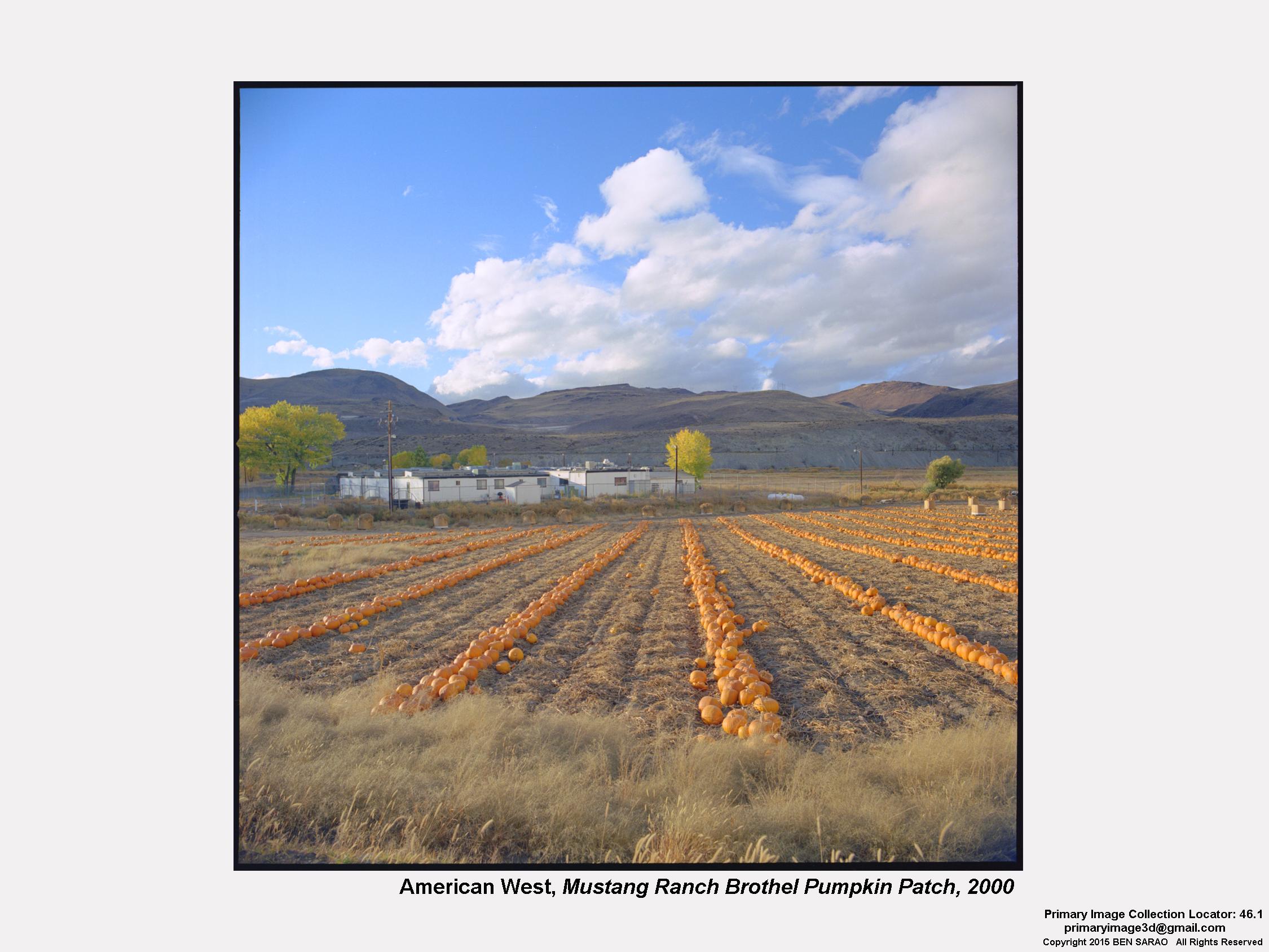 27. American West Mustang Ranch.jpg