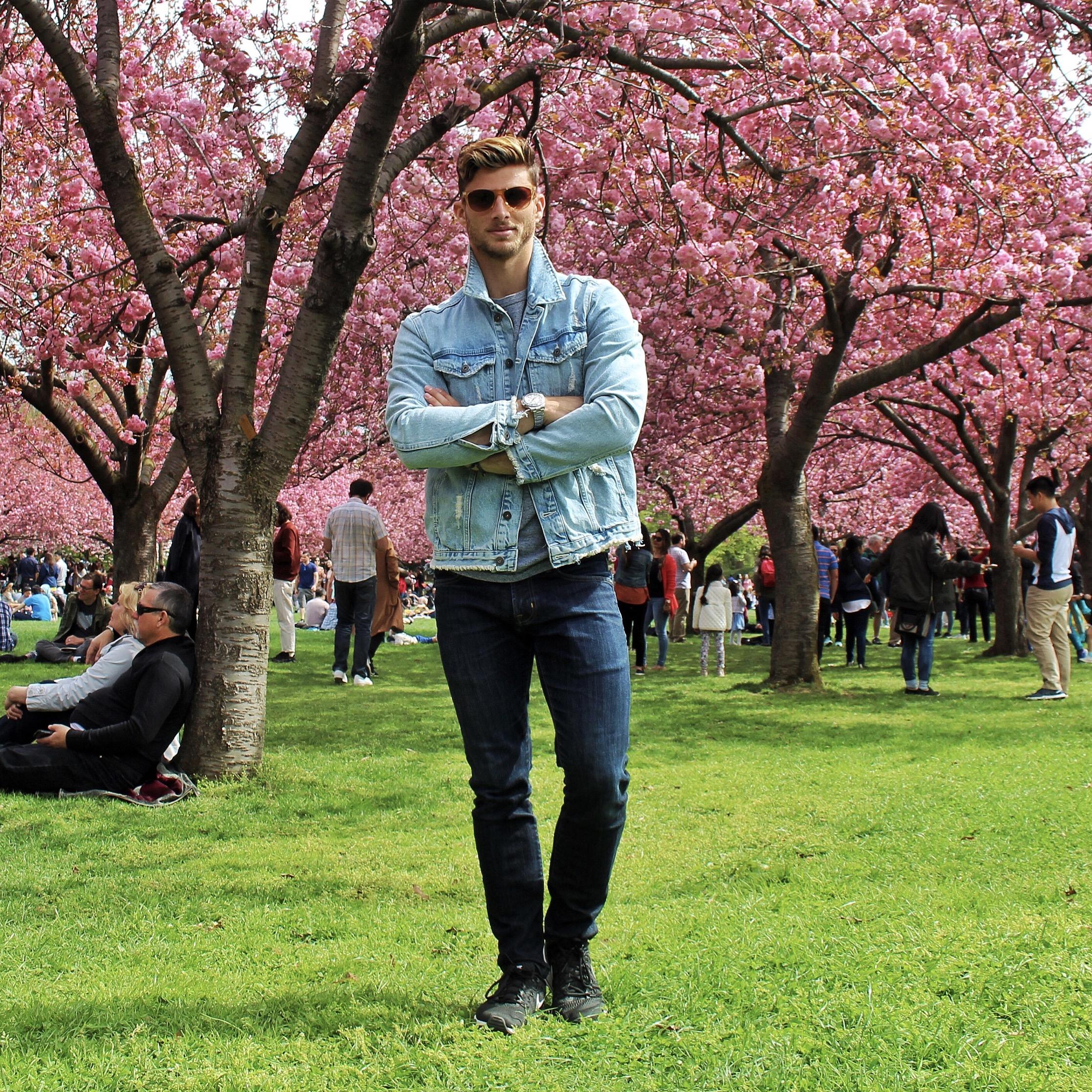 Cherry Blossoms 2.JPG
