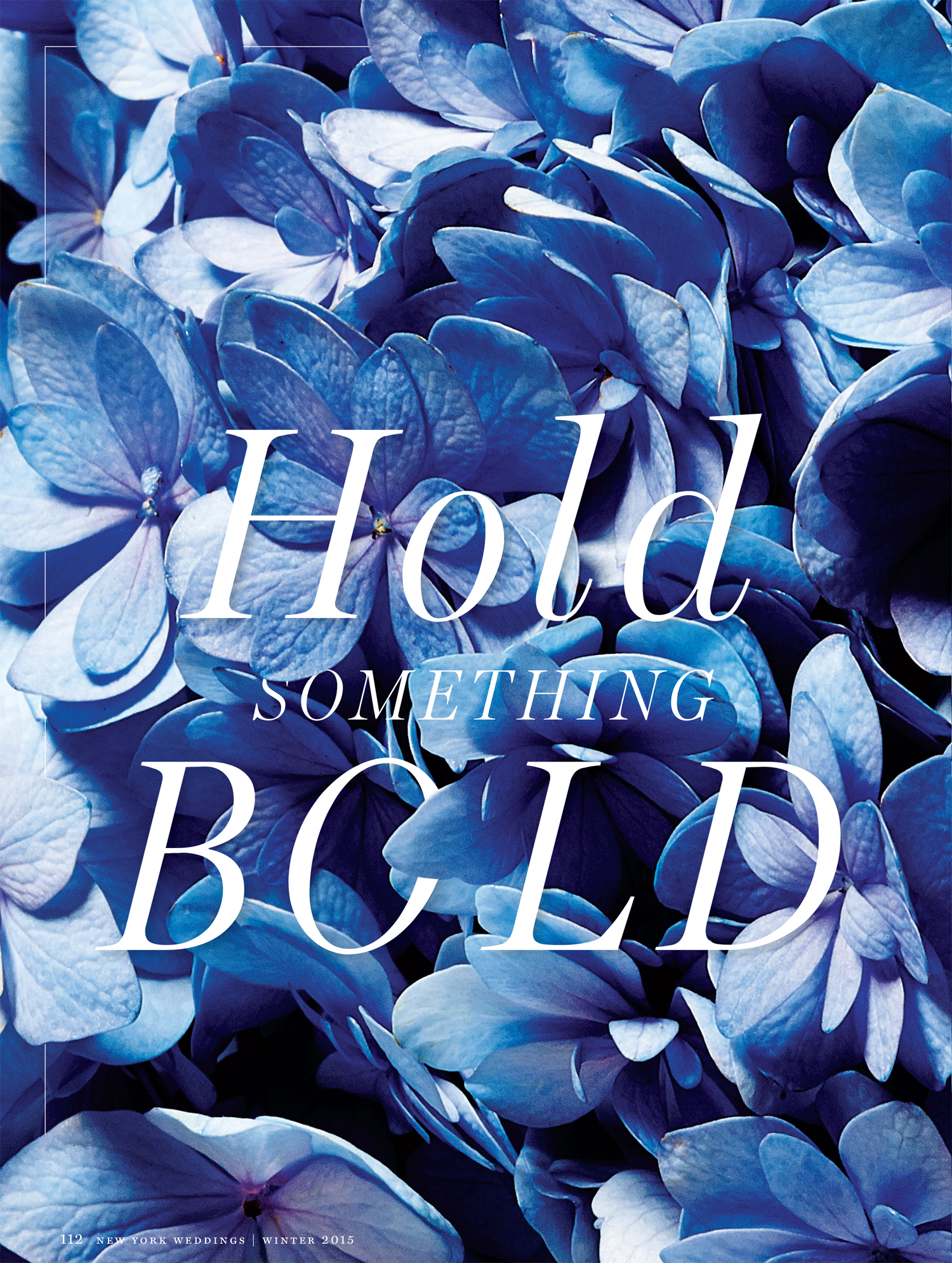 NY MAGAZINE Hold Something Bold Cover Page.jpg