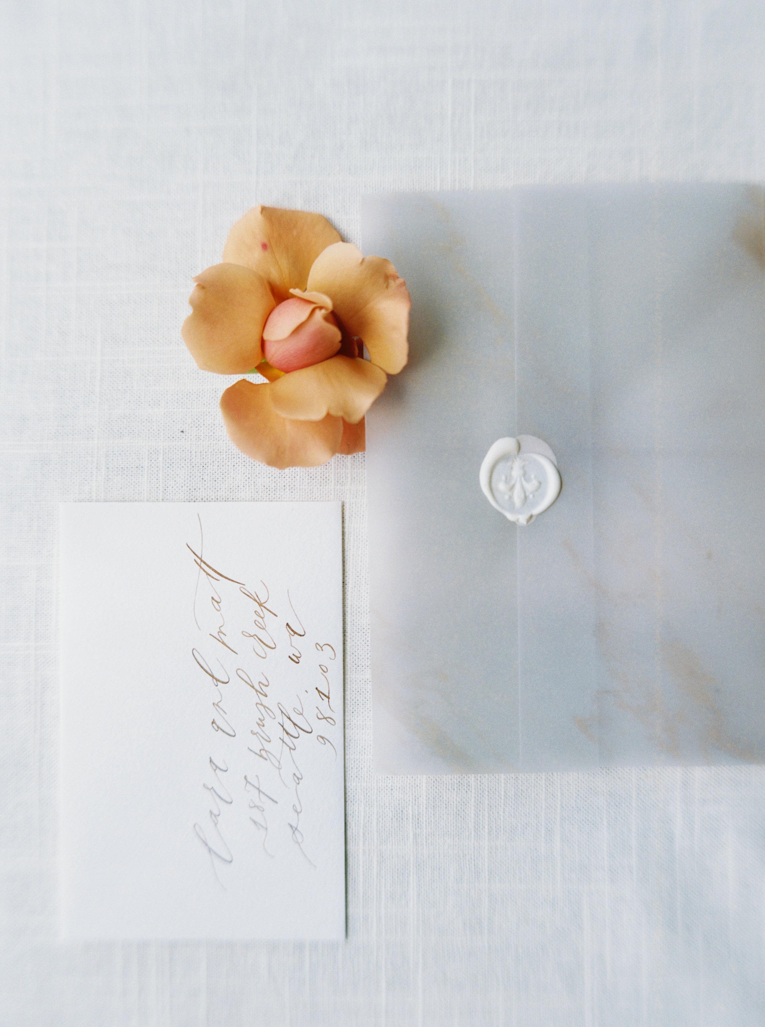 Wild Bloom Floral - Blue Rose Photography  20.jpg