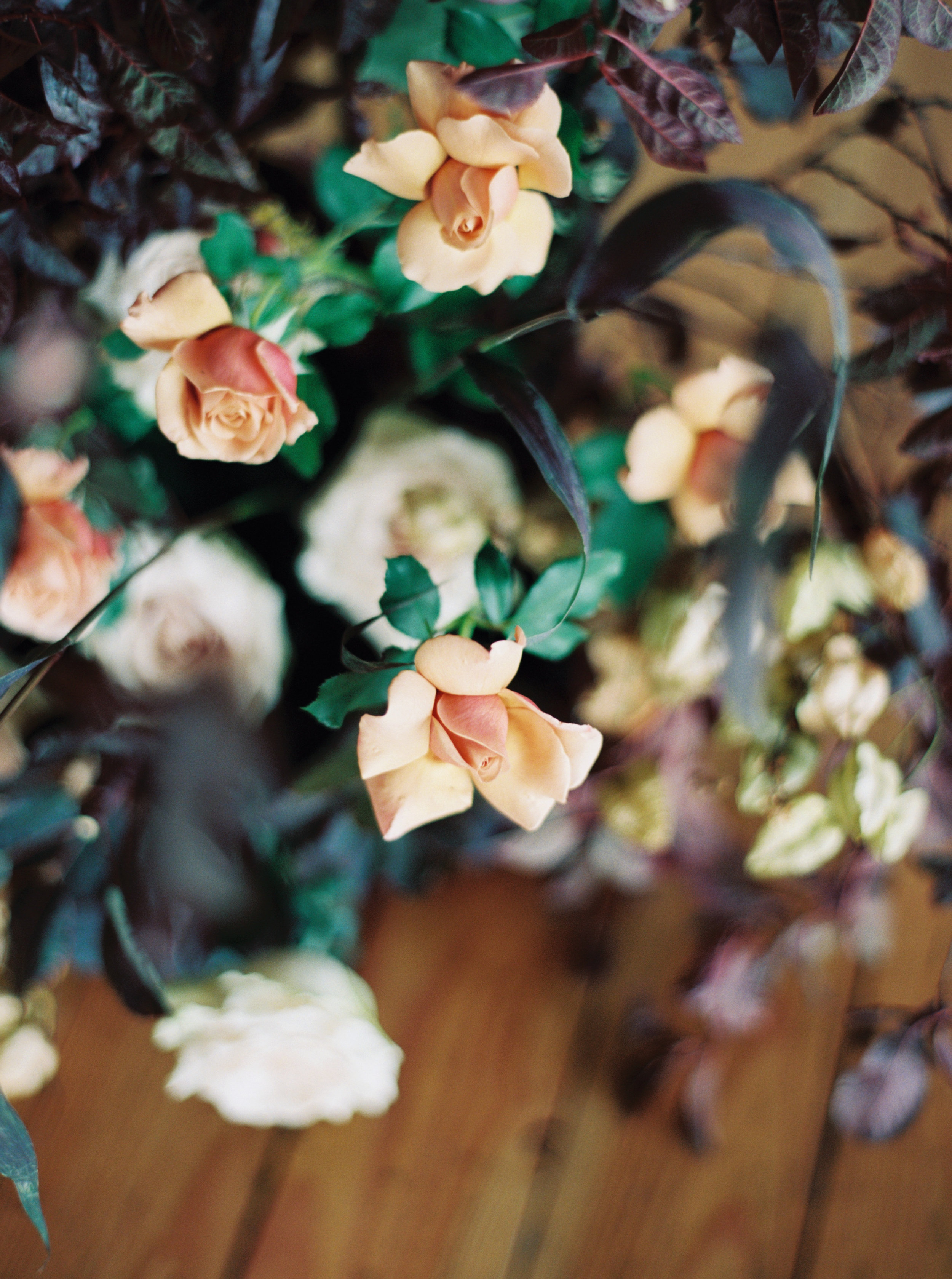 Wild Bloom Floral - Blue Rose Photography  27.jpg