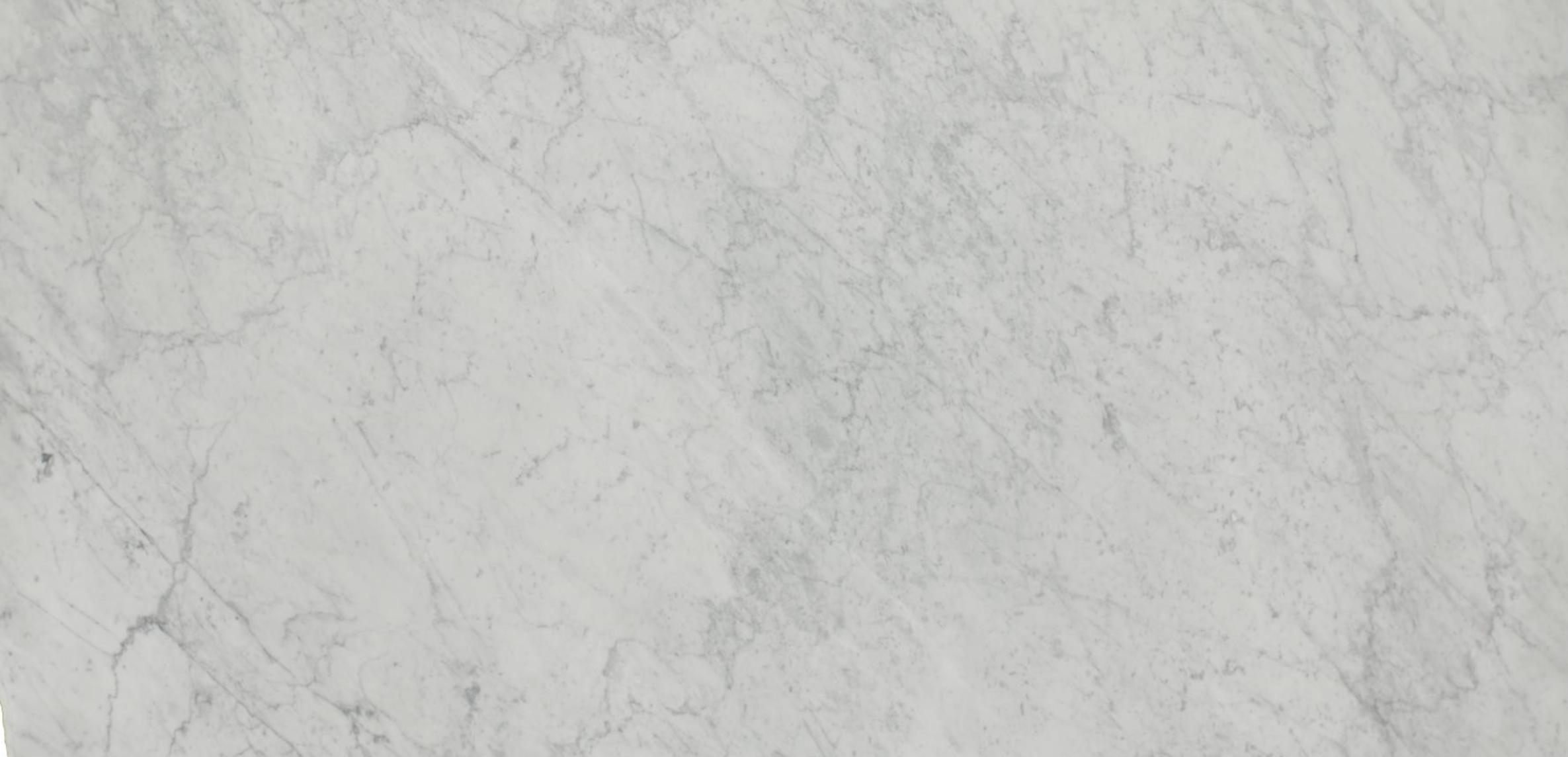 MARBLE | WHITE CARRERA CLASSIC