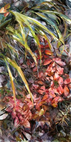 Forest Floor Flora