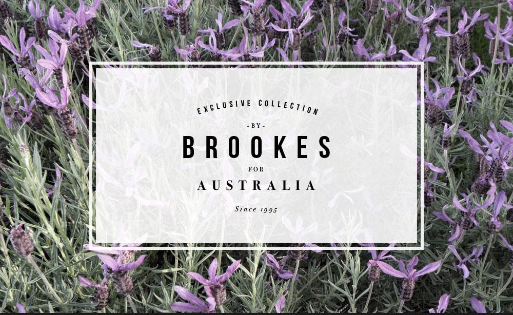 CRD-Brookes-Branding-01.jpg