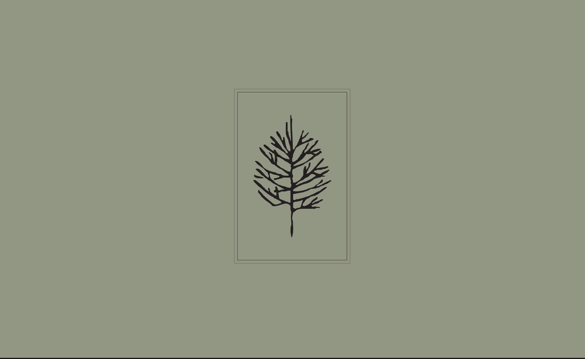 ©-Chris-Rae-Design-BTM-Exteriors-Brand-Logo-Identity-Design-02.jpg
