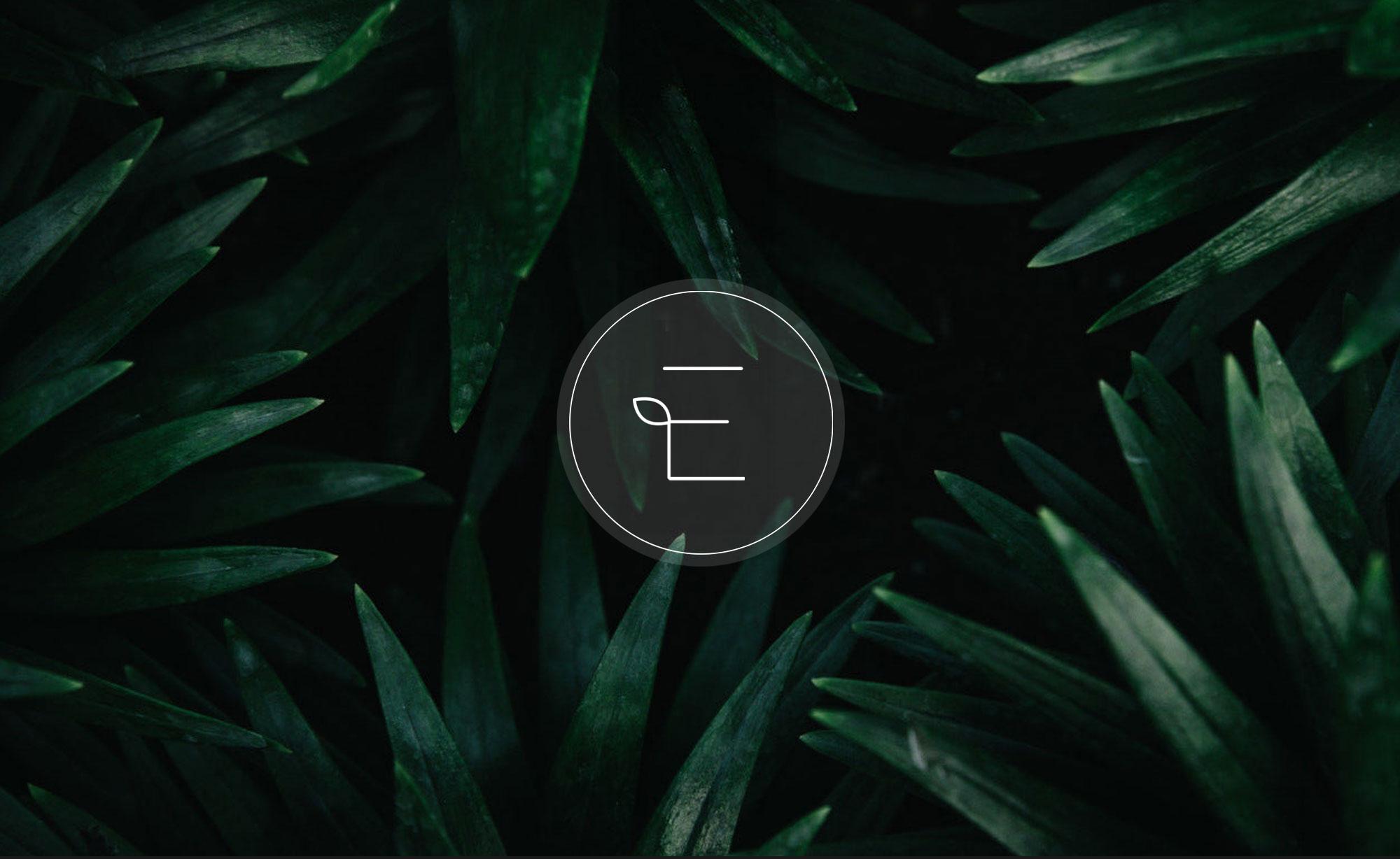©-Chris-Rae-Design-Sydney-Exotic-Nurseries-Logo-Design-Branding-02.jpg