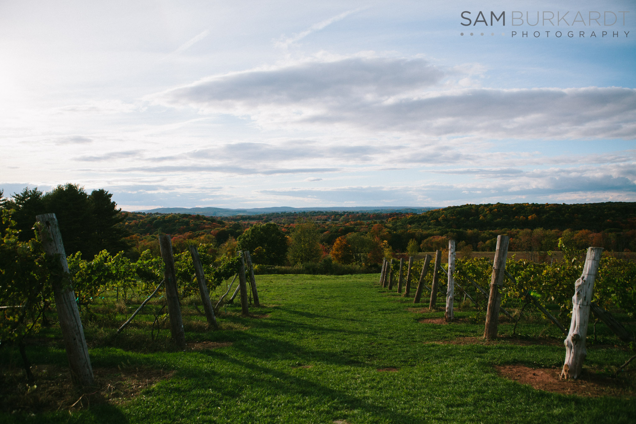 samburkardt-fall-engagement-connecticut-vineyard-nature-wine_0010.jpg