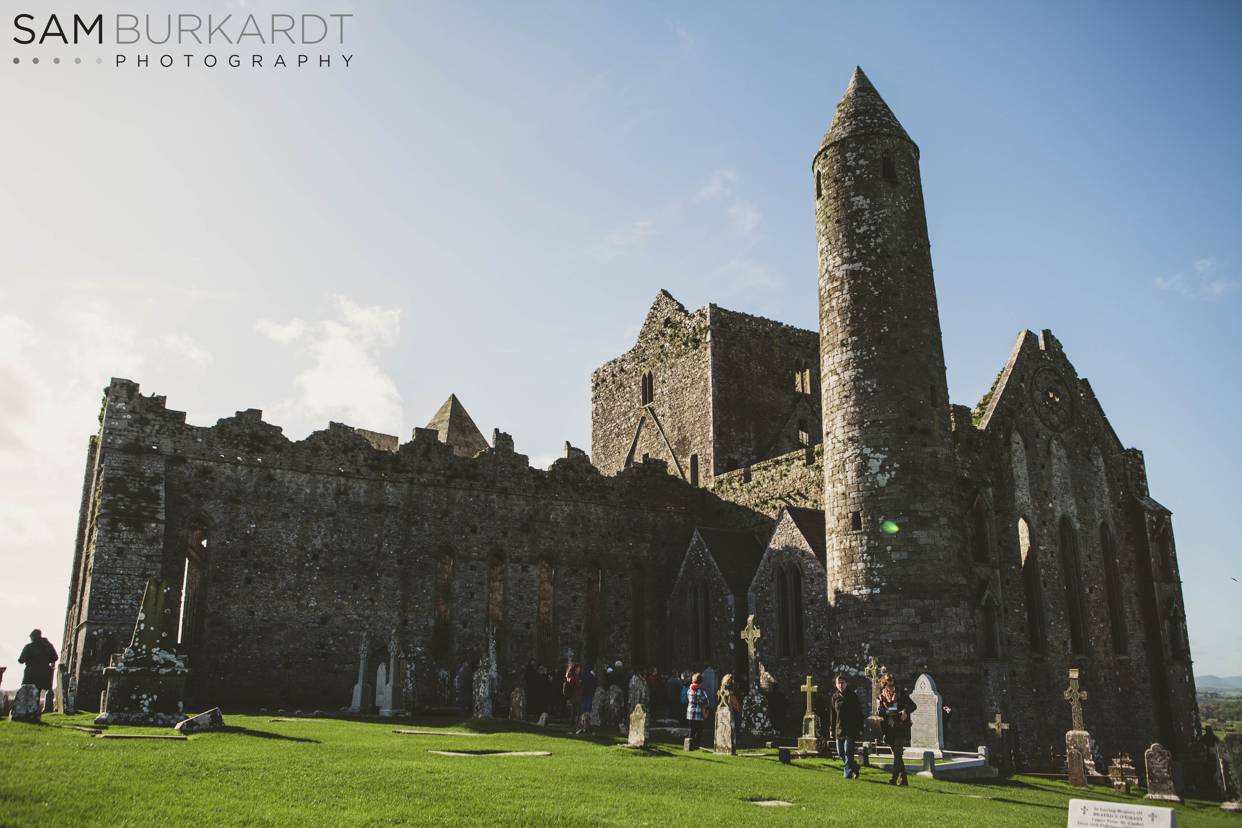 rock_cashel_ireland_travel_portrait_photography_bees