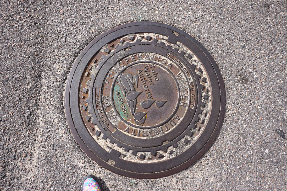 © 2018 Louise Levergneux. Manhole cover in Orlando, Florida.
