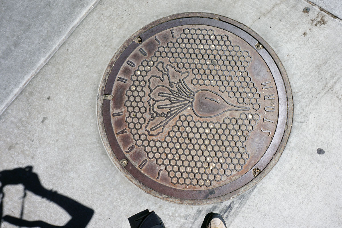 © 2018 Louise Levergneux. Manhole cover in Sugar House, Salt Lake City, Utah.