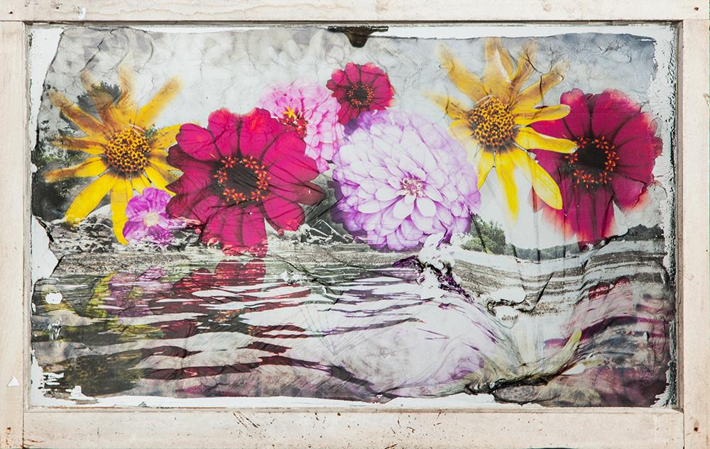 Flower Tide
