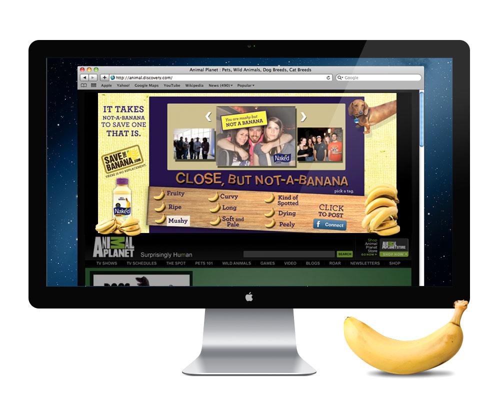 Banner Ad-opened.jpg