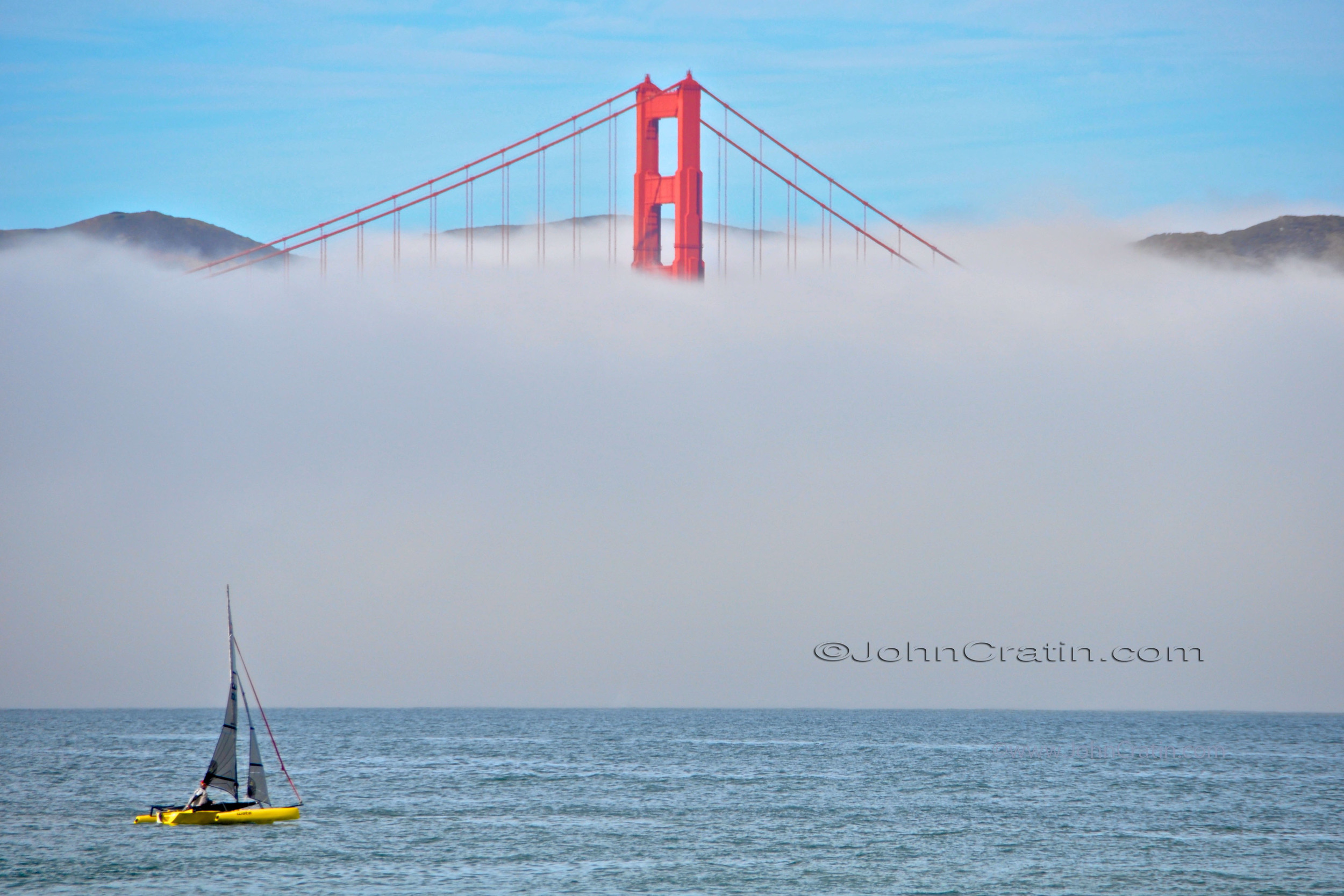 Golden Gate Cat C-R copy.jpg