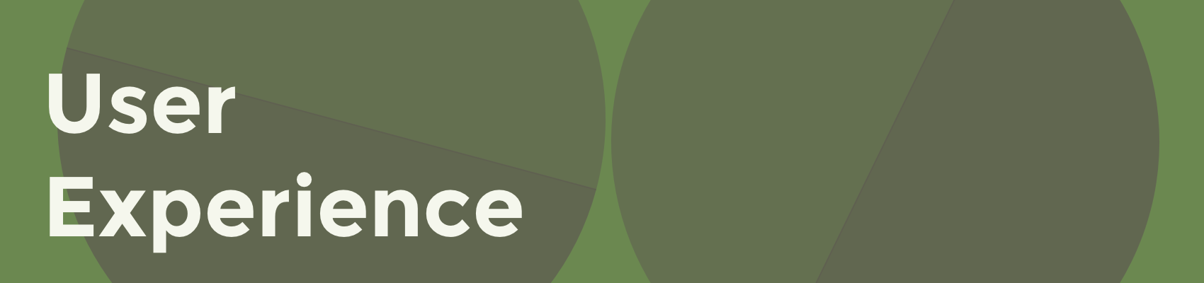 User Experience Banner.png