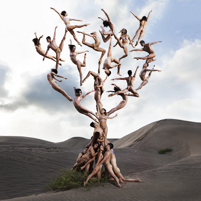 Tree Of Life 1400.jpg