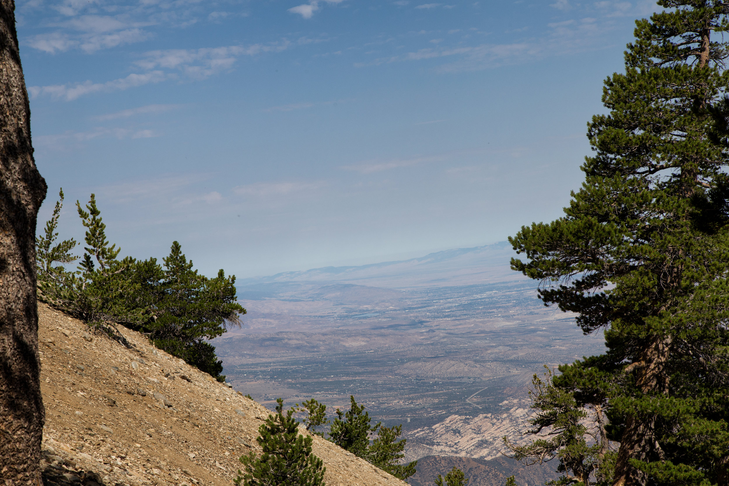 This is the view at 8,907 ft. It was a clear day and on the way up we took in spectacular views of the Mojave and the LA Basin.