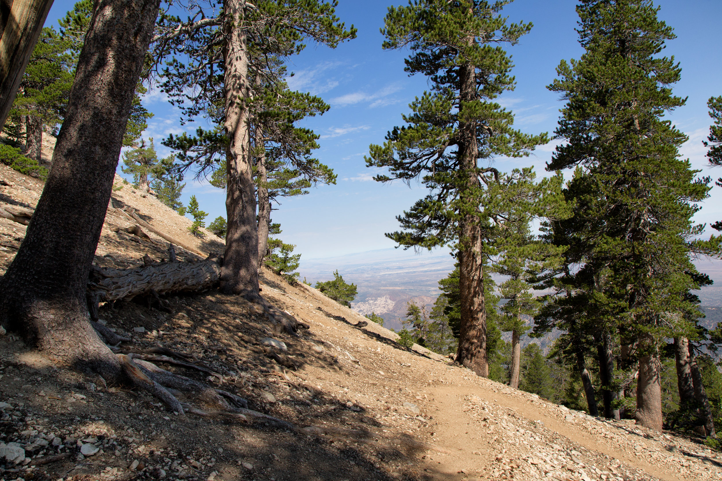 Looking back at one of the many switchbacks.