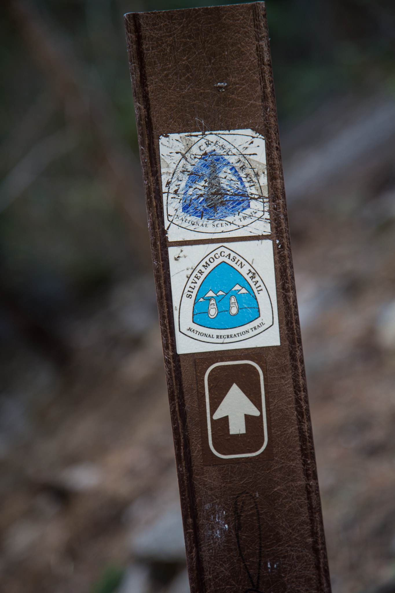 You are also on a section of the PCT and Silver Moccasin trail.