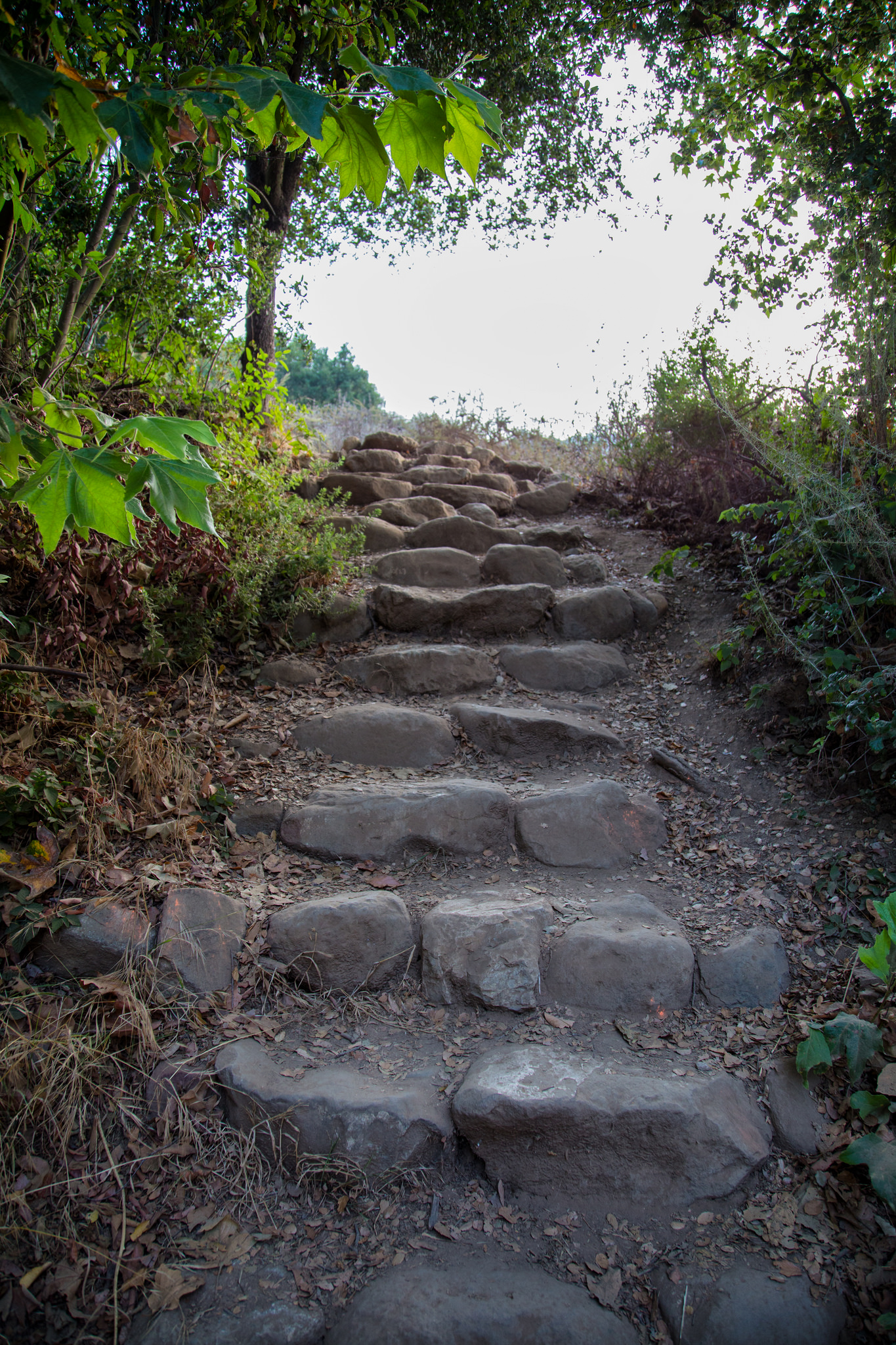 Steps at the trailhead leading up to the Rising Sun Trail which takes you to Tropical Terrace and the Solstice Canyon Falls. You can also take the easier, paved Solstice Canyon Trail directly there, but if you want to do a little work, take Rising Sun.