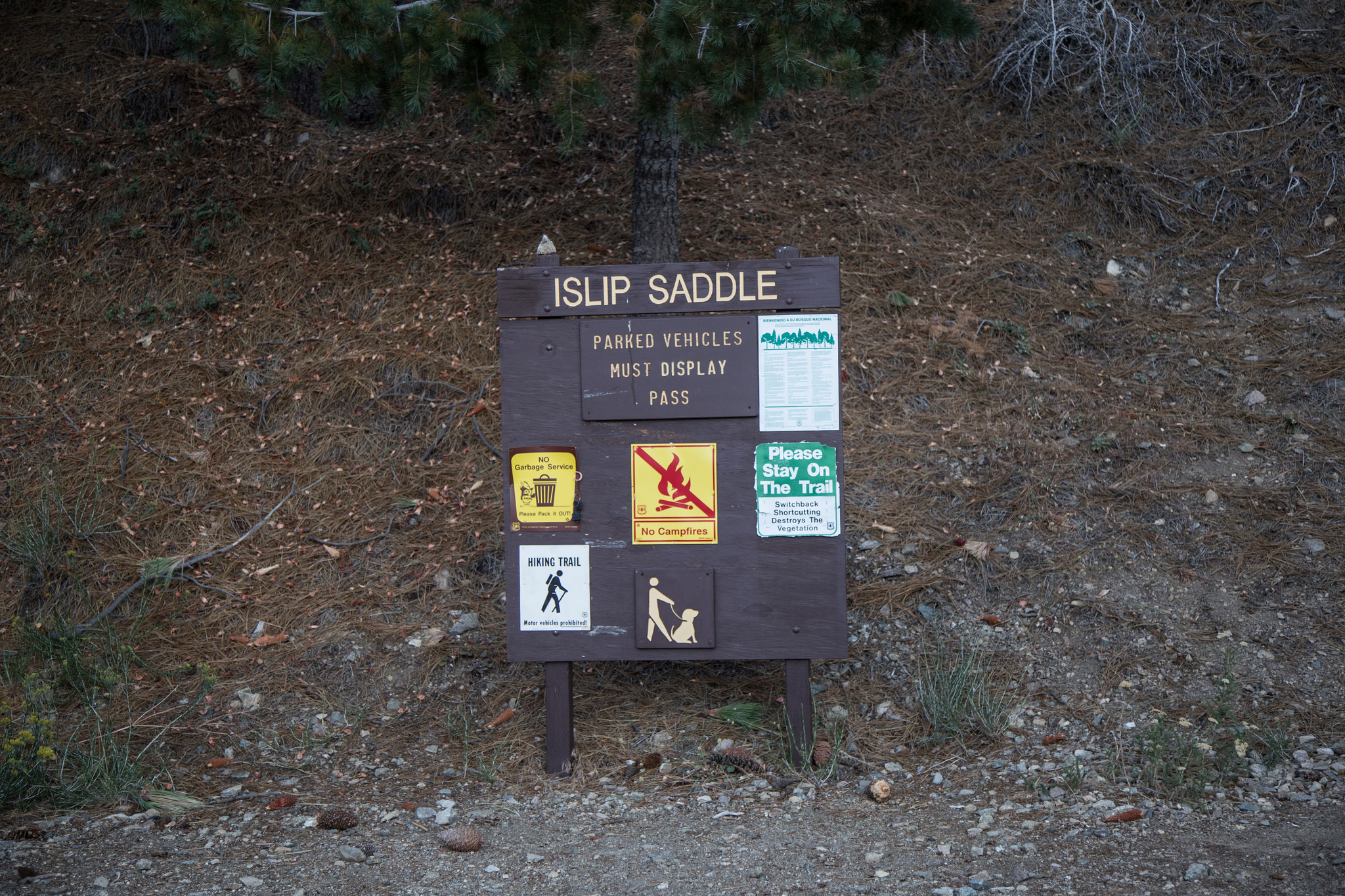 We parked here at Islip Saddle. The trailhead to Mt. Islip peak is actually on the south side of Angeles Crest.