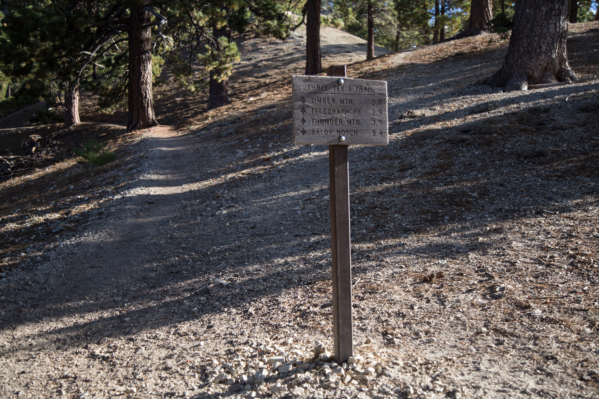And the next climb on the Three Tee's Trail to Timber Mountain. You can also summit Telegraph and Thunder but we stuck to just the one for today. We have to work up to all three!