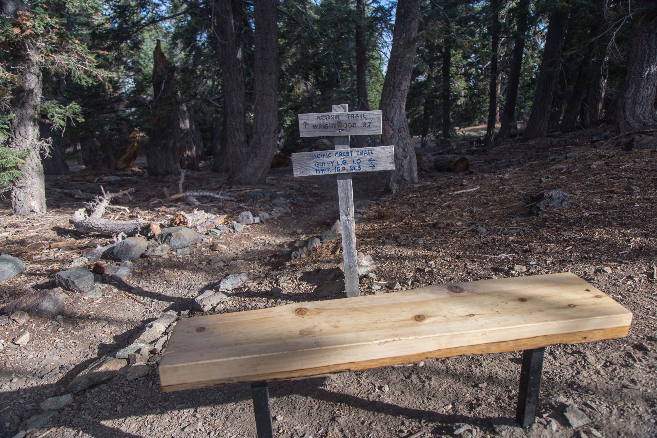Looking back the way we came, there's a bench and a sign marking the Pacific Crest Trail.  We headed east to find the trail to the summit of Wright Mountain.