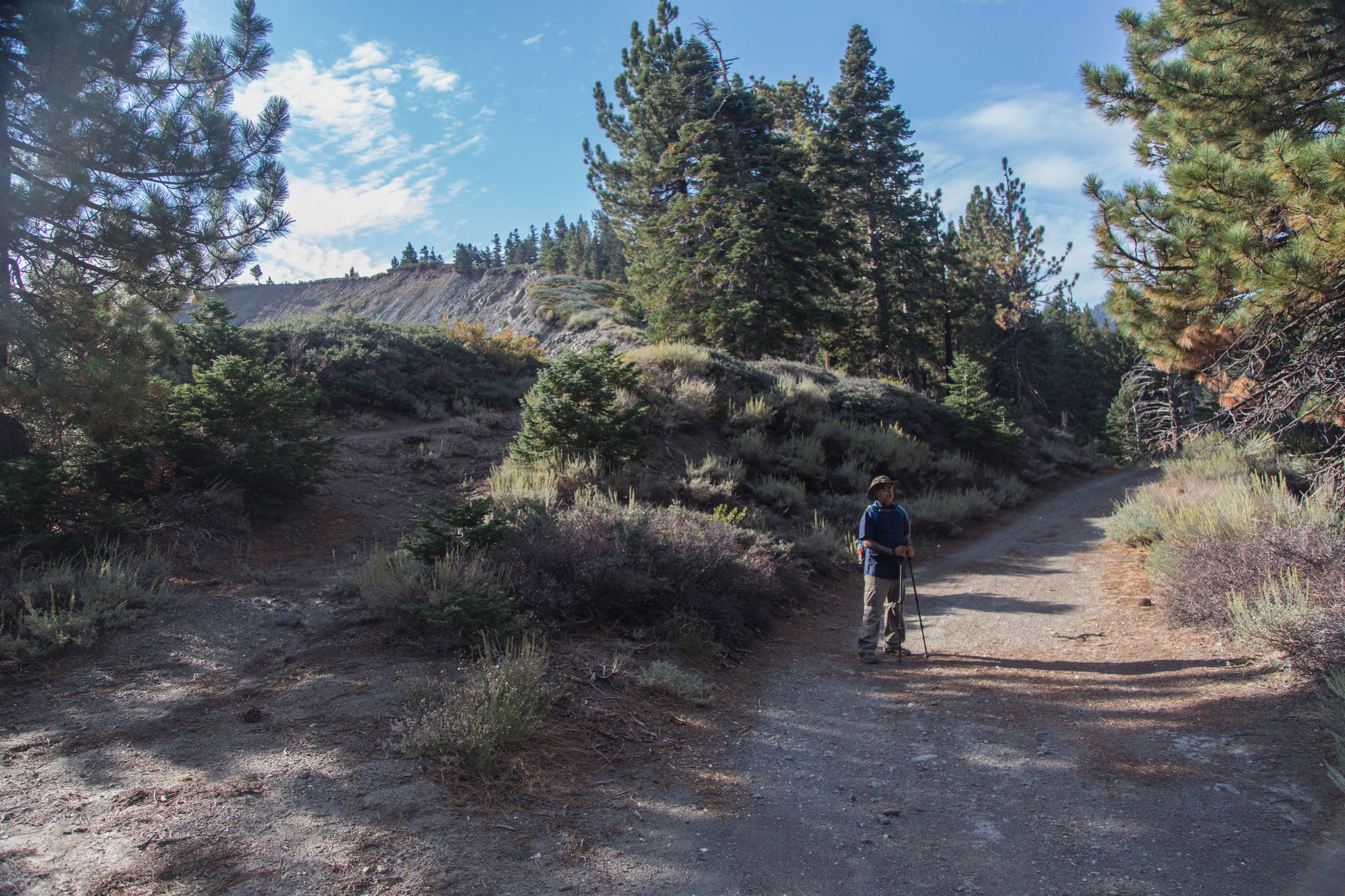 At about 1/4 mile, the PCT will intersect with the Blue Ridge Truck Trail. We hopped on the truck trail and according to my directions, we thought it would lead us to the summit.