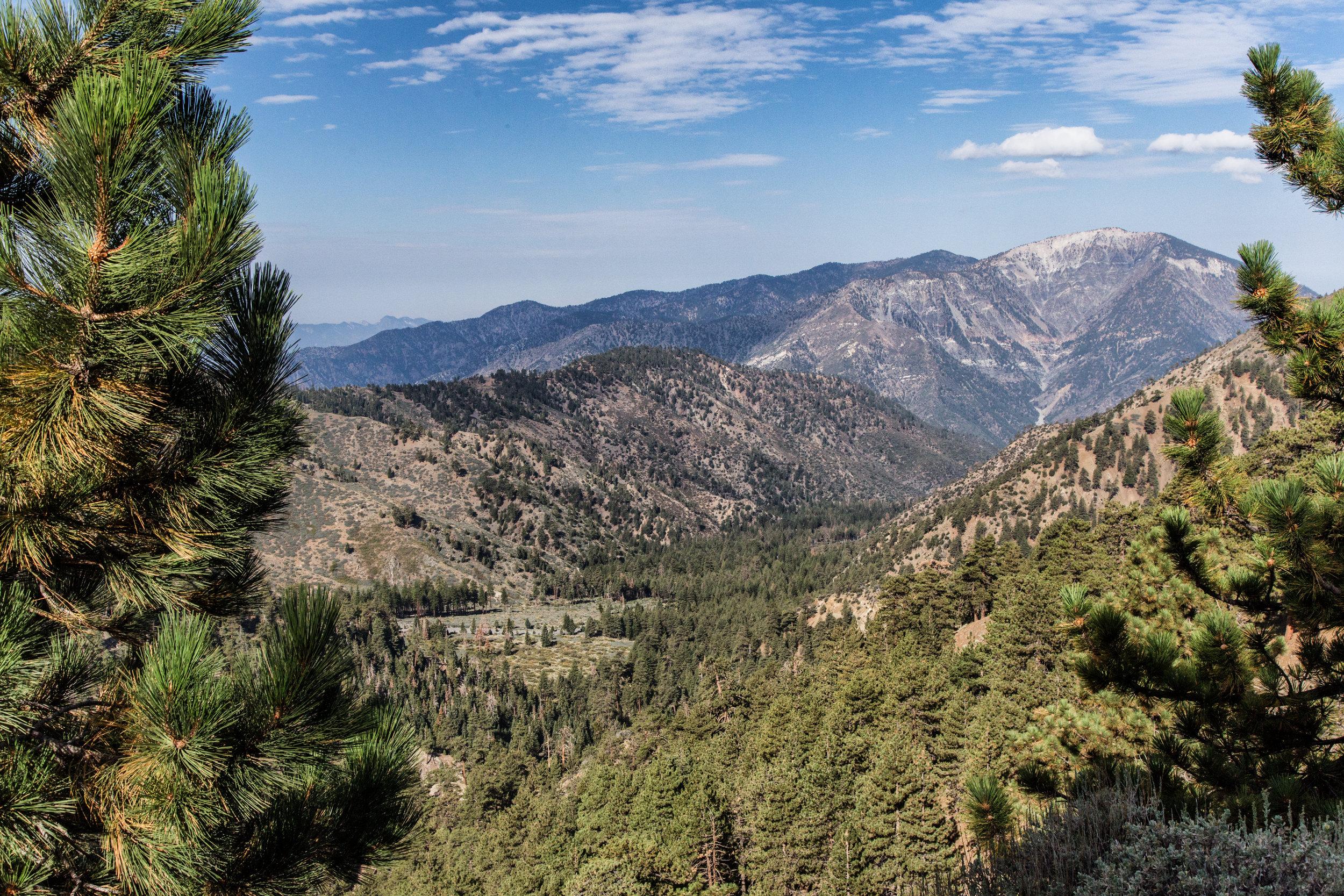 Mount San Antonio and the Sheep Mountain Wilderness.