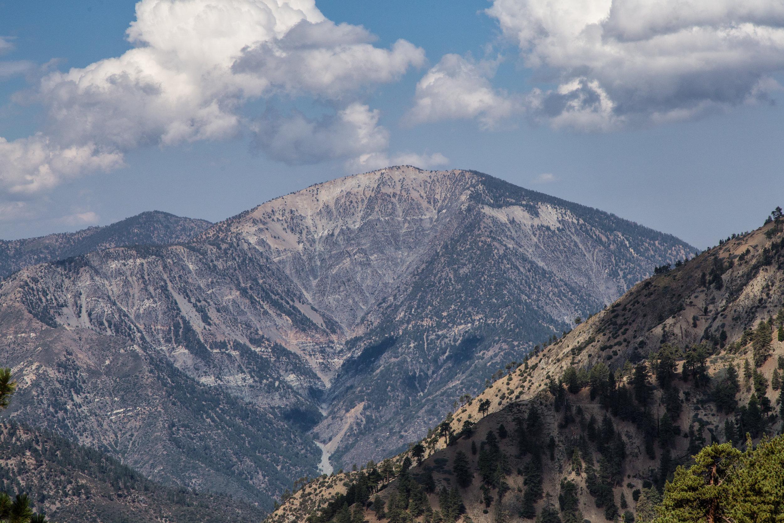 Enjoying the views of Mount San Antonio along the PCT.