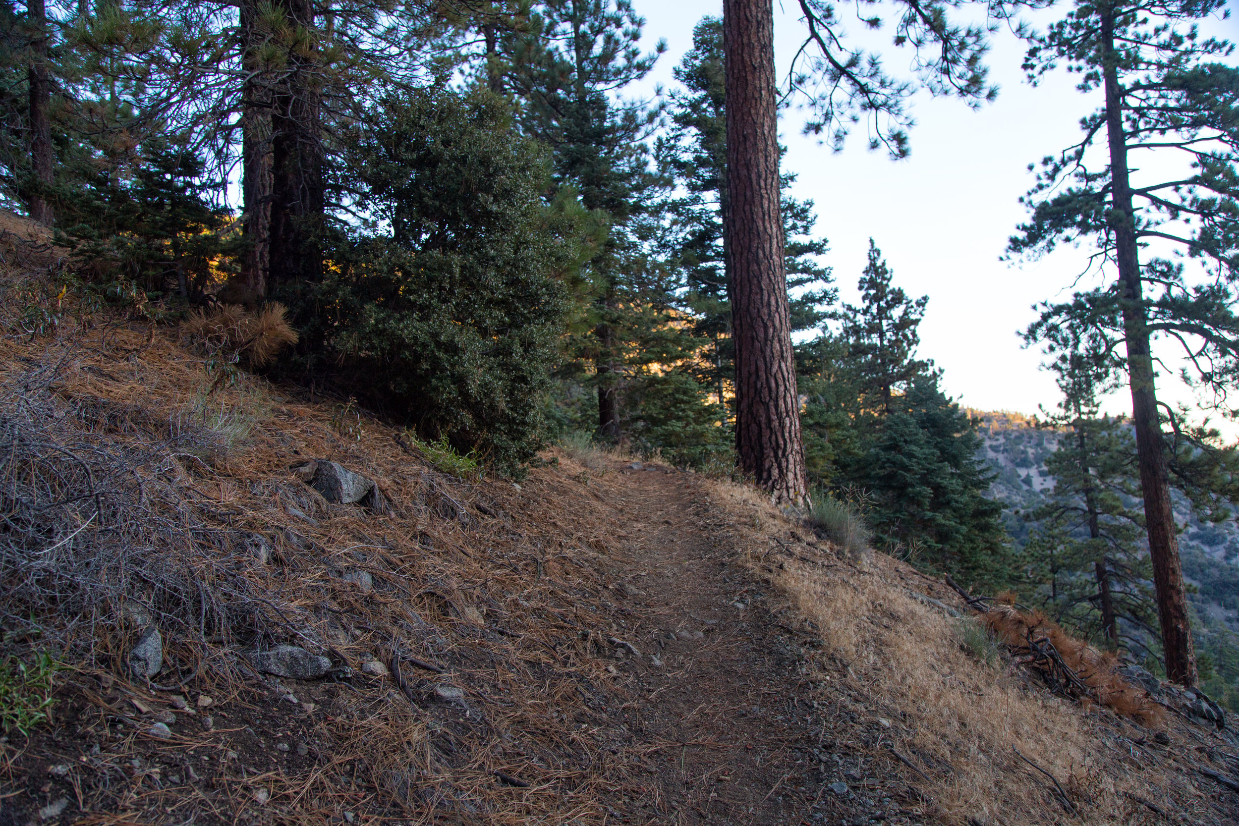 Started off on the PCT Silver Moccasin Trail at 7:08 am.