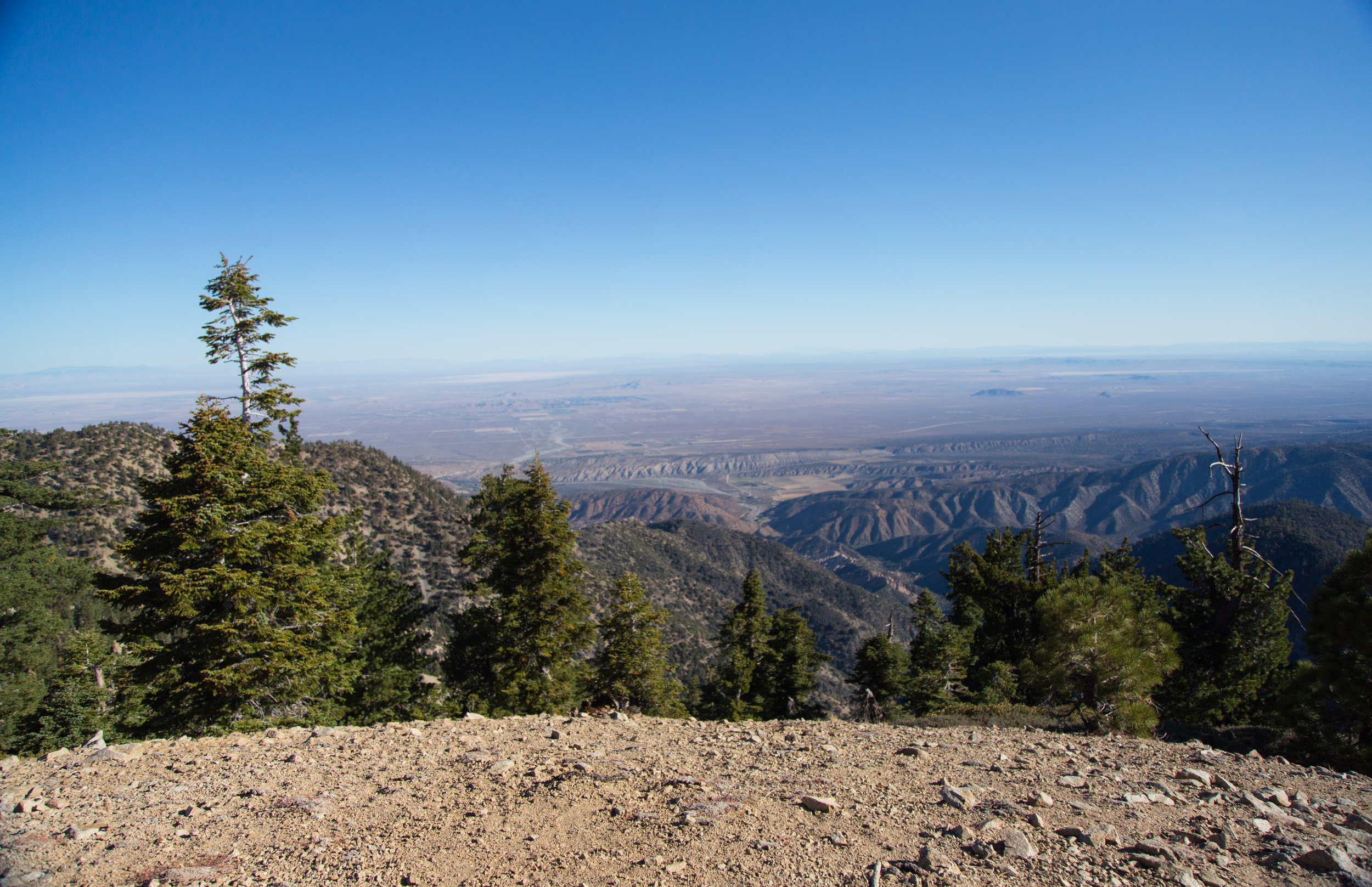 Made it to the summit!Since there are no trees, there's a wonderful 360 degree view of everything from the lush, San Gabriel mountains to the mojave desert to the Devil's Punchbowl and the San Andreas rift zone!